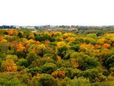Platte River State Park- Nebraska - Taken at the tower